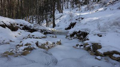 Gefrorener Bach im Schofgraben