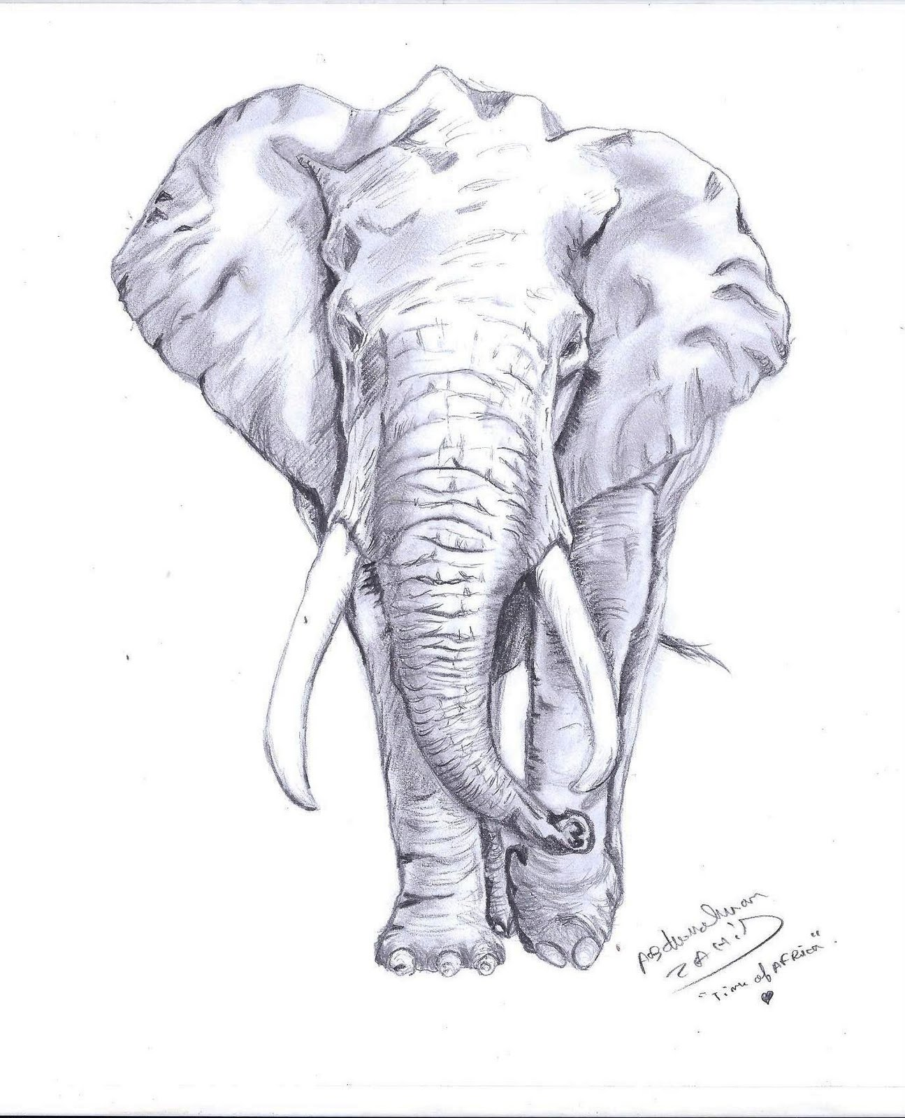 Ideas For Front Door Abderrahman Zahid Arts Elephant Drawing