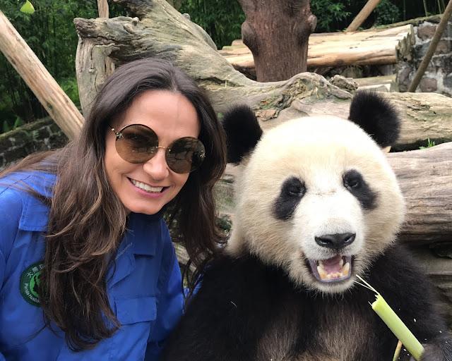 os pandas chineses