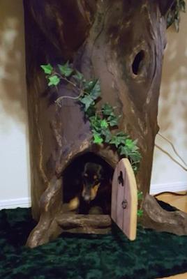 Unique Pet Tree