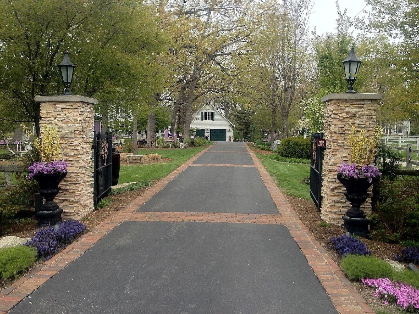 Enchanted Garden: - The Bunnies' Buffet: The Enchanted Garden