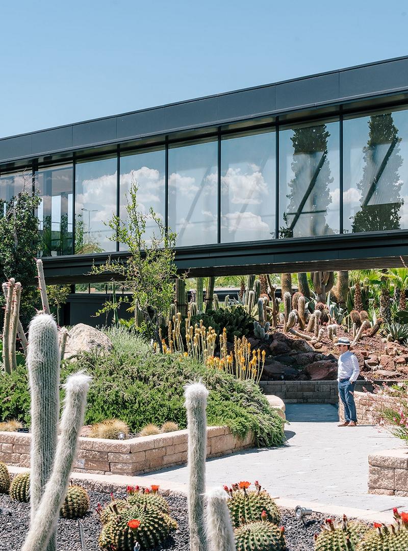 Desert city jardines cactus y xeropaisajismo en madrid for Jardin cactus madrid