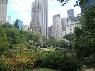Vista parcial do Central Park