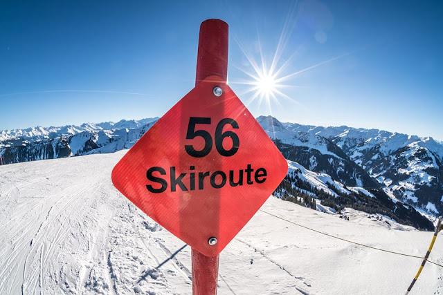 Ski vs. Bike