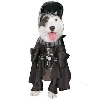 dog-halloween-costumes-South-Africa