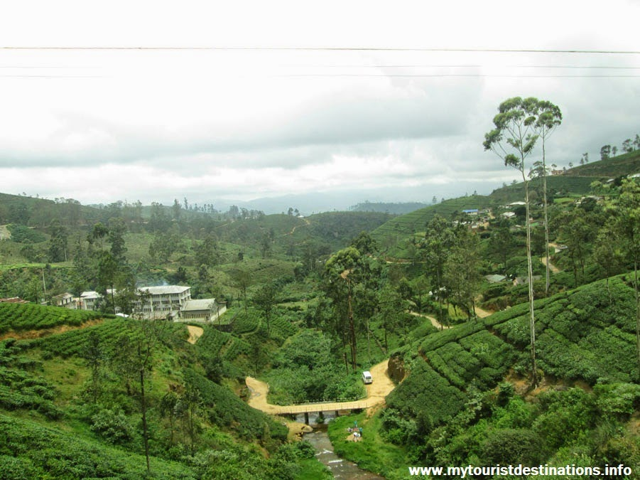 Kandy to Badulla by Train