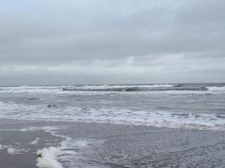 despues de la sudestada se aprecia el swell