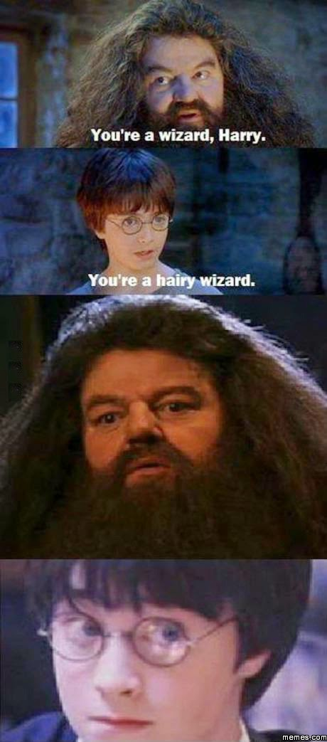 You're a wizard, Harry.  You're a hairy wizard.