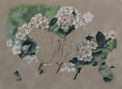 Miniature Wildlife Painting in pastel by Award Winning Artist Colette Theriault