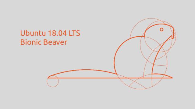 18.04 LTS Bionic Beaver