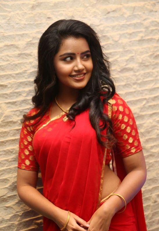 Anupama Parameswaran Biography