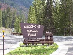 National Forest Shoshone