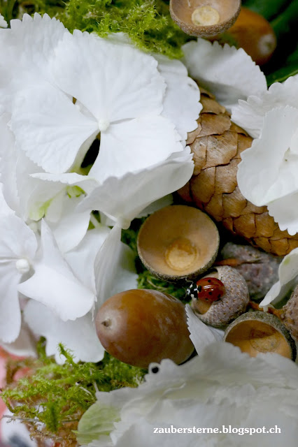 Marienkäfer, Ladybug, Waldkranz, Herbstfloristik