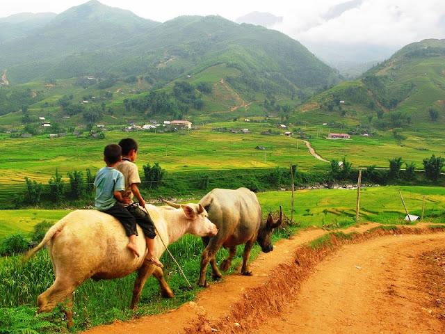 Portraits of Sapa: Lao Chai Village 1