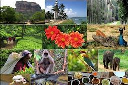 Keanekaragaman Makhluk Hidup
