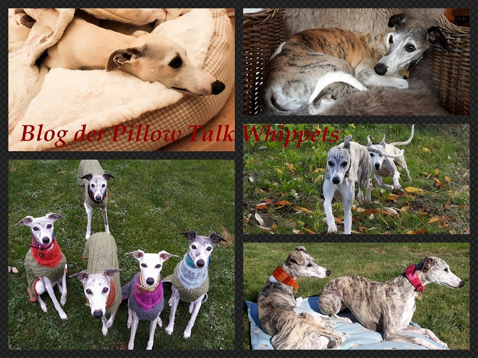 Pillow Talk Whippets