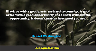 Black or white good parts are hard to come by. A good actor with a good opportunity has a shot; without the opportunity, it doesn't matter how good you are.   -Denzel Washington