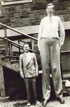 Manusia raksasa Manusia tertinggi di dunia yang pertama yaitu Robert Wadlow