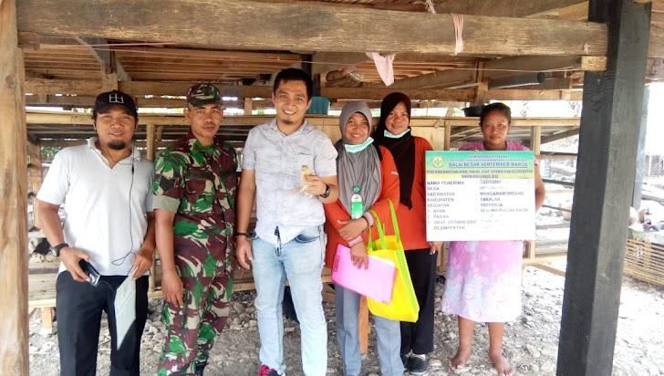 Kabid Peternakan, Bupati H Syamsari Peduli Masyarakat Kurang Mampu di Marbo