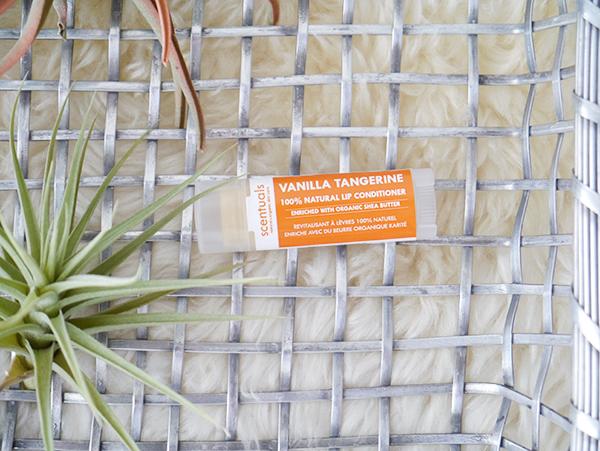 Scentuals Vanilla Tangerine Lip Conditioner