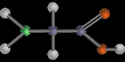 GlycineAmino Acid.