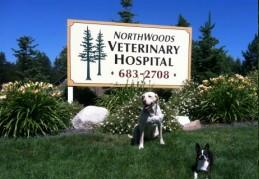 Northwoods Veterinary Hospital