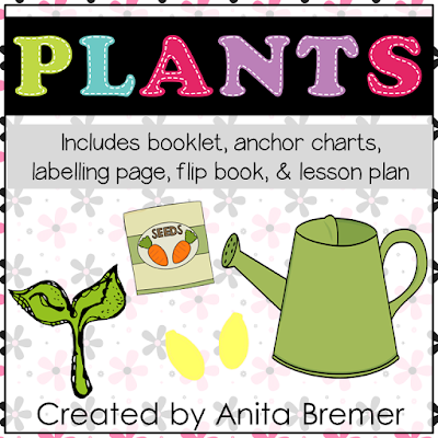 Spring theme- Learning About Plants in Kindergarten