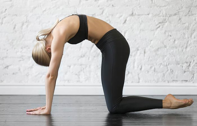 Reduce Back Fat Fast For Women- Cat Cow Pose