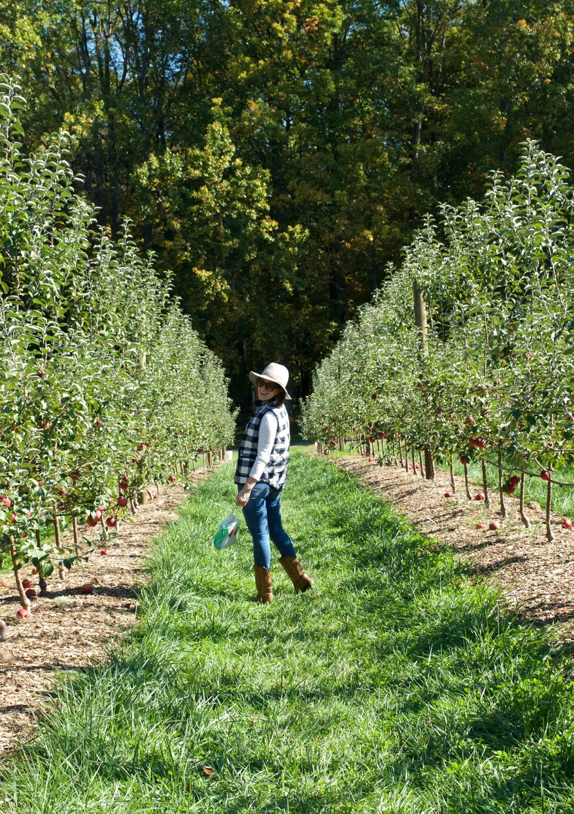 fall apple picking outfit - what to wear apple picking - j.crew buffalo check vest
