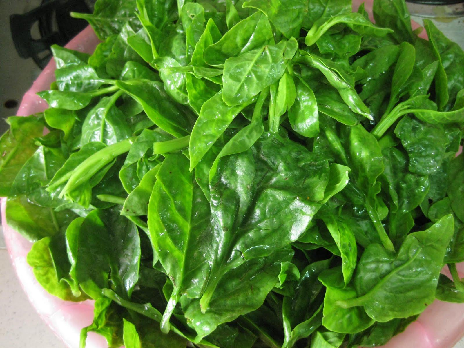 sayur tumis belacan tips resep  membuat Resepi Sambal Belacan Atkins Enak dan Mudah