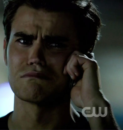 The Review Diaries The Vampire Diaries Review The Birthday