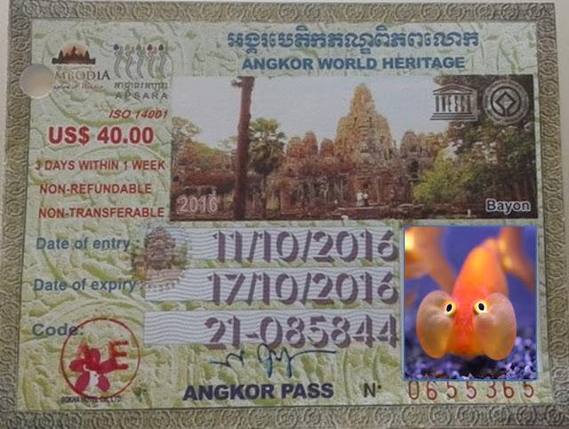 Angkor Wat , entrada para 3 días