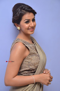 Nikki Galrani in Saree 050.JPG
