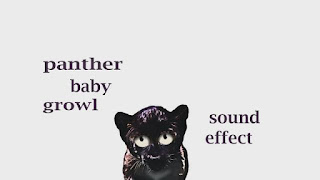learn panther sounds