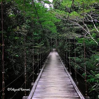 jembatan gantung desa kepala gurung