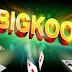 Tải BigKool 2017 game hay của người Việt