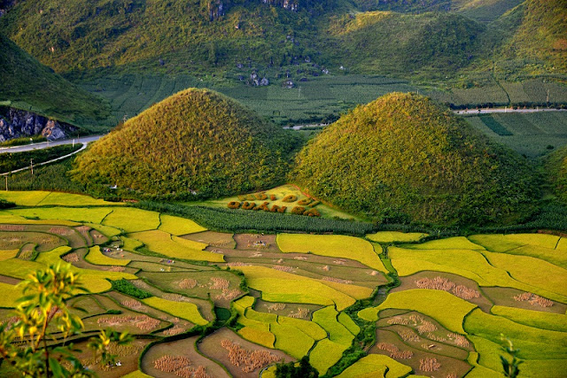 Ha Giang's wonderful beauty through the lens of travellers 2