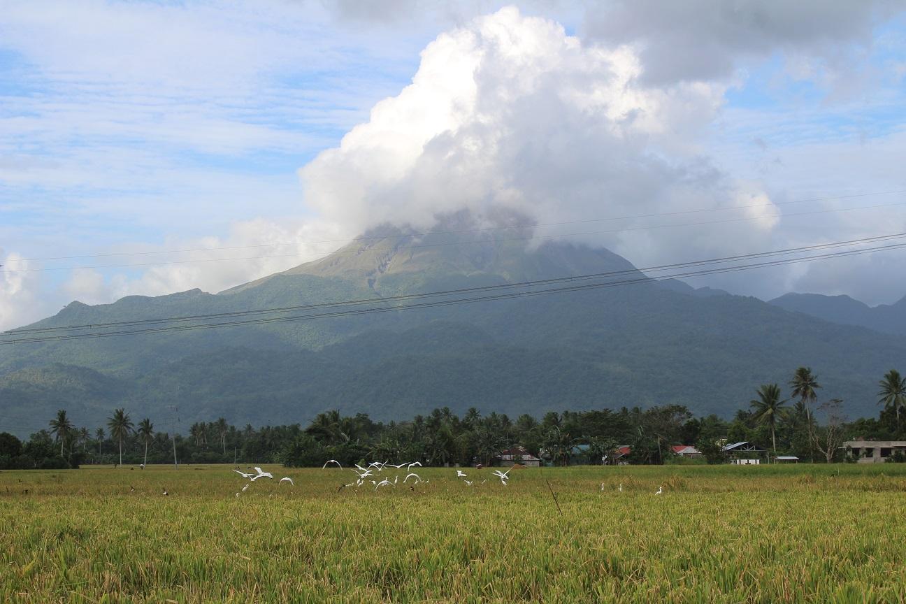 barangay casini irosin sorsogon
