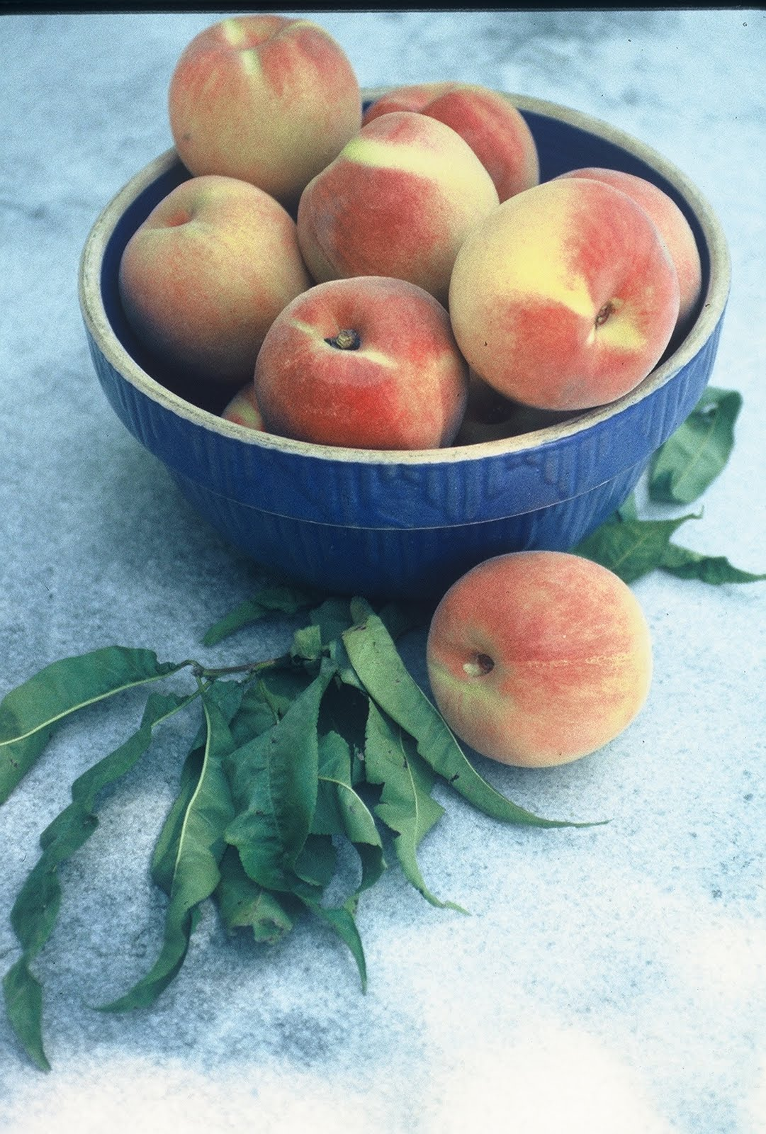 ALFRESCO: A Tale of Fresh Peaches and Peach Leaves