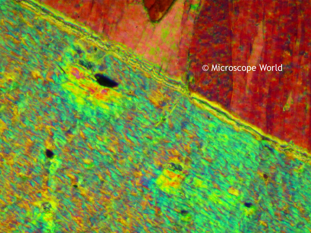 Tremolite under a polarizing microscope utilizing the full wave plate.