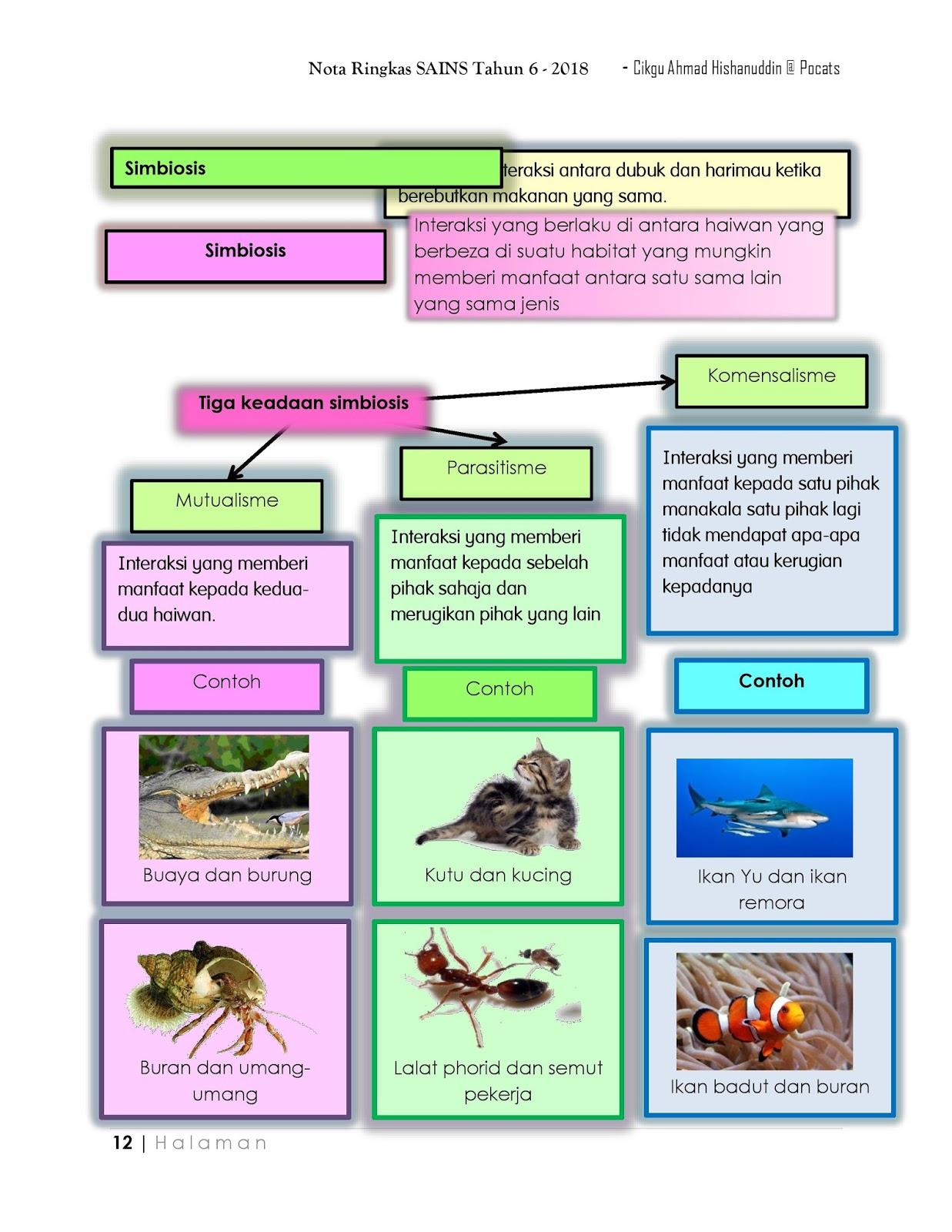 Notasains T6 Interaksi Antara Kehidupan