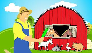 farmer, animals, barn, duck, pig, goat, horses, rabbit, hay, barnyard, sign, symbol, farm, cartoon, design, grass, clouds, sky, village