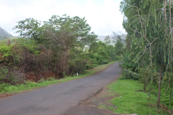 Pawna dam camping road