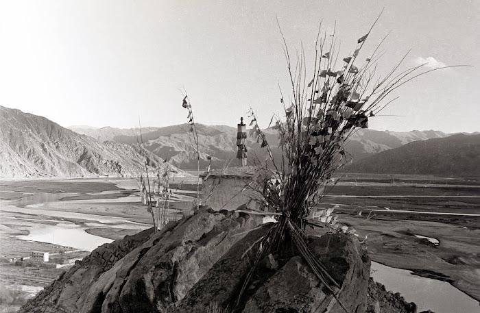 Tibet, Quxu, arbre à prières, © L. Gigout, 1990