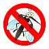 Cai para menos de 1% o índice de infestação de mosquito da dengue