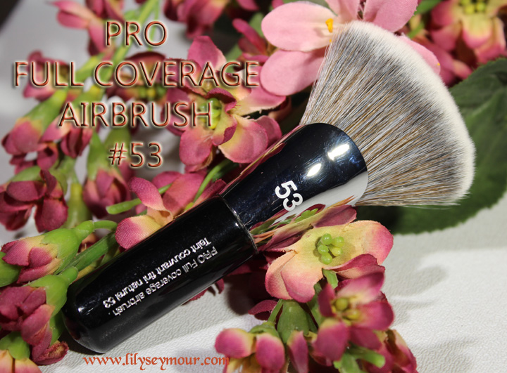 PRO Foundation #47 by Sephora Collection #22