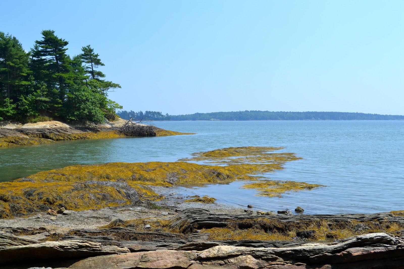 Freeport Maine Coastline