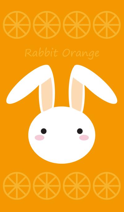 Rabbit Orange Vol.1