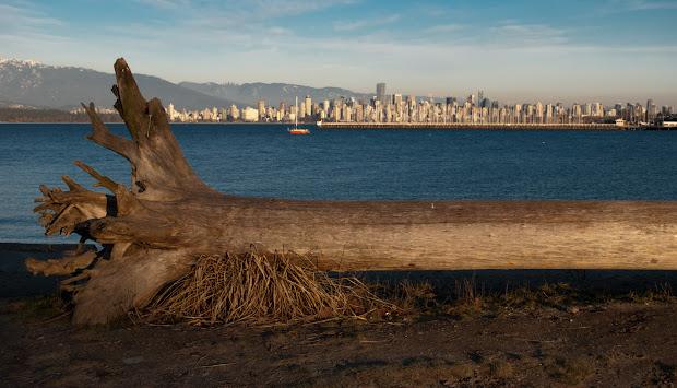Vancouver Daily City Skyline Jericho