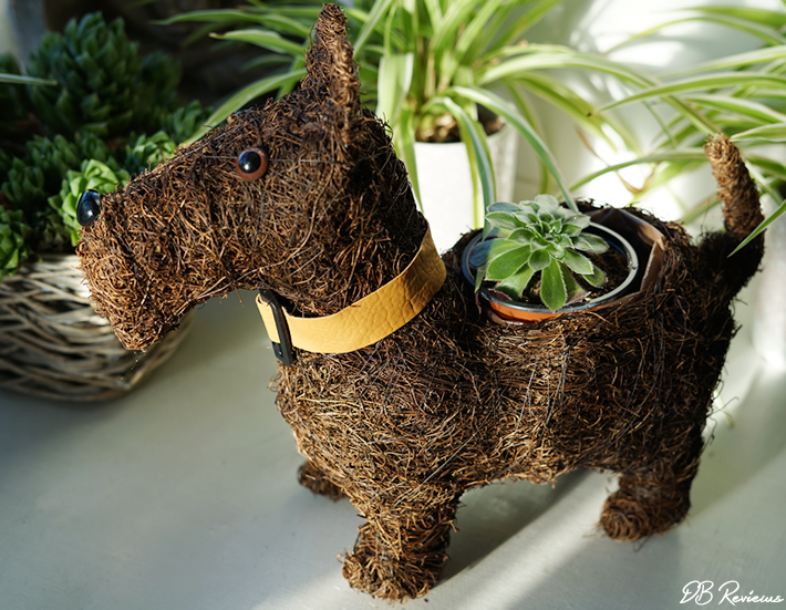 Hamish The Scottie Dog Terrier Planter